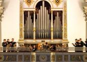 Organo-Rozzampia
